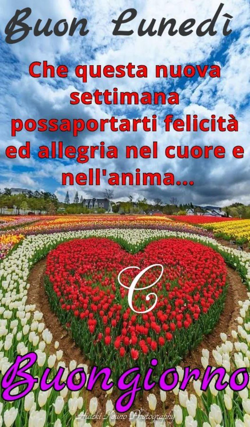 Buongiorno Buon Lunedì Amore Mio 2 Buon Lunedì Agli