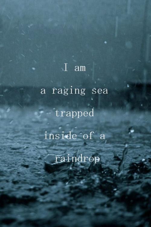 Imgfave Amazing And Inspiring Images More Rain Rain
