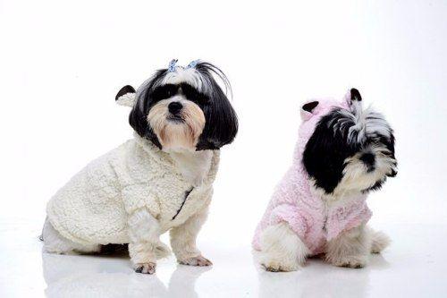 roupa de cachorro- capa ovelha