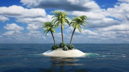 Coconut Tree 3d Wallpapers And Backgrounds Best Nature Wallpapers Nature Wallpaper Ocean Landscape