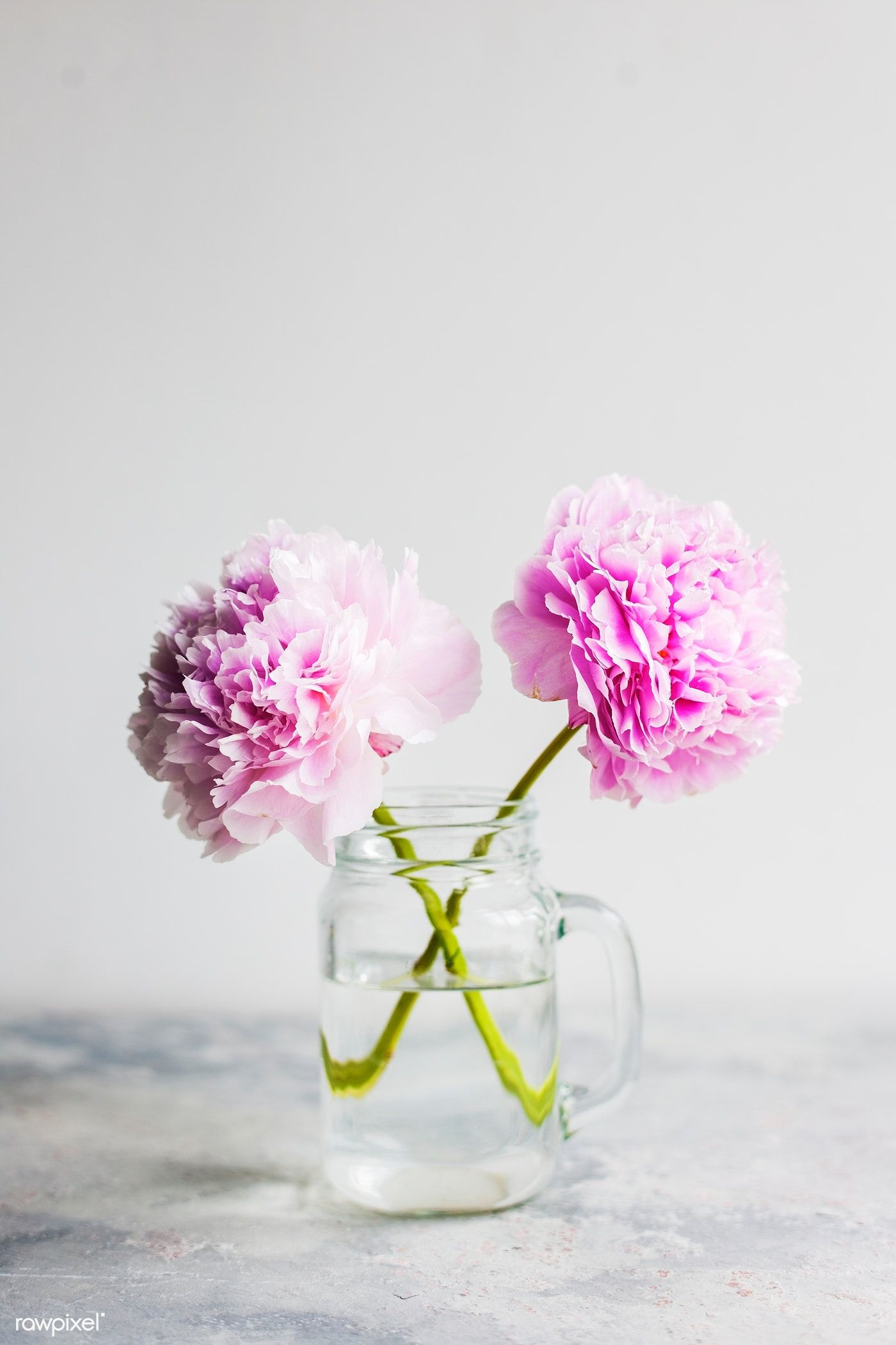 Download Premium Photo Of Decorative Pink Carnations In A Jug 94097