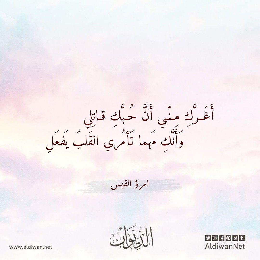 الديوان موسوعة الشعر العربي امرؤ القيس Poet Arabic Calligraphy Calligraphy