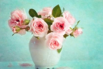 Vase of roses - (#120143) - High Quality and Resolution Wallpapers on hqWallbase.com