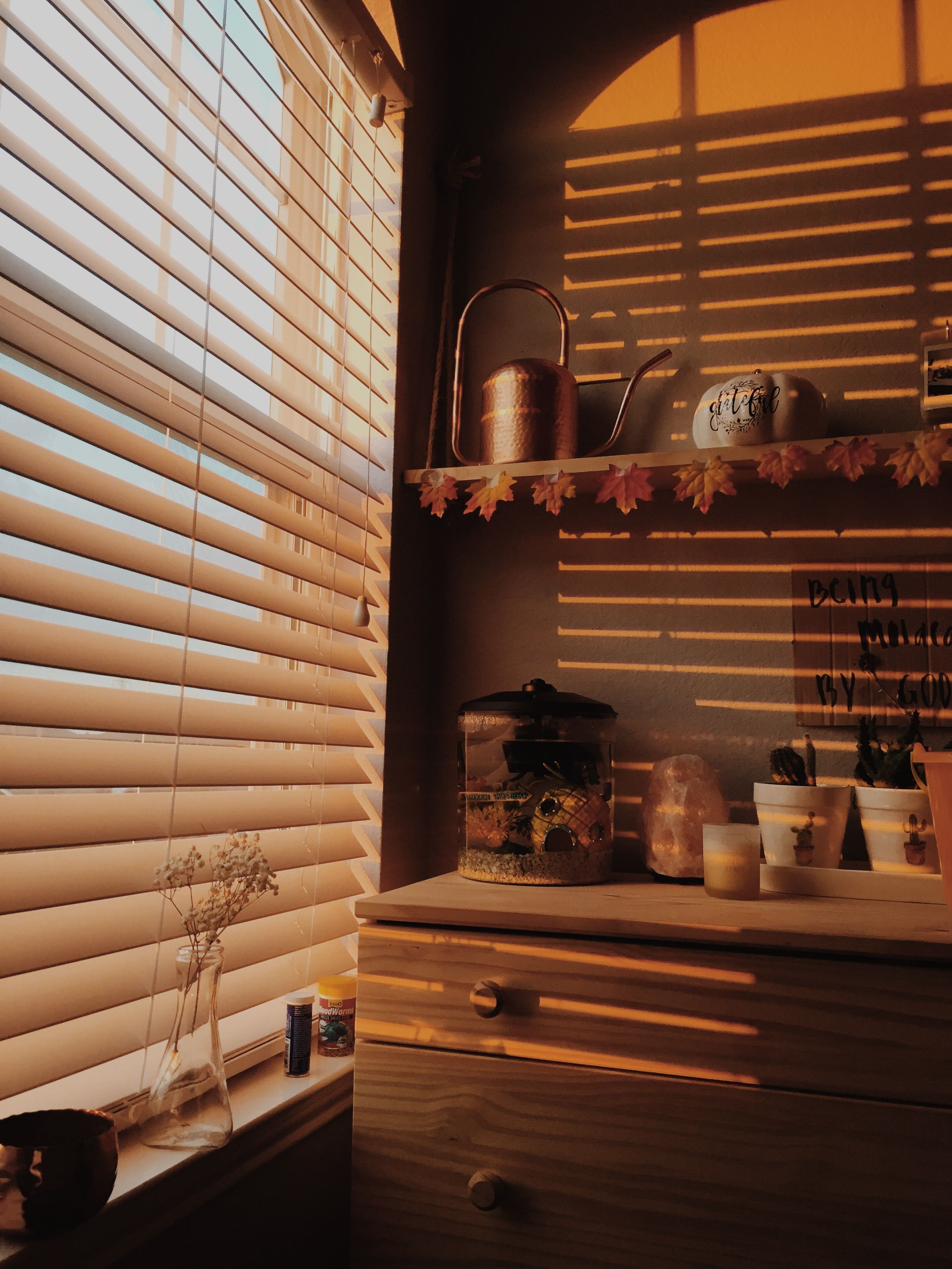 fall golden hour aesthetic rooms interior aesthetic