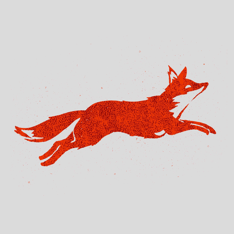 afd495b26f157d327ed6ea77182f1fa9.jpg (3000×3000) | Foxes ...