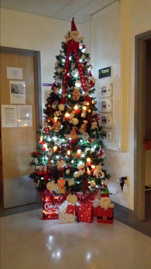 baby tree, SCBU Whiston Hospital, 2014