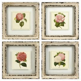 Four Piece Botanical Print Wall Art Set With Weathered White Frames Product 4