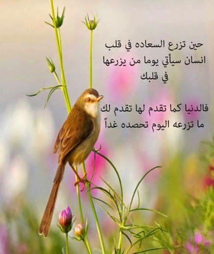 احلى كلامنا السعادة في قلب انسان Love Smile Quotes Message Of Hope Free Iphone Wallpaper
