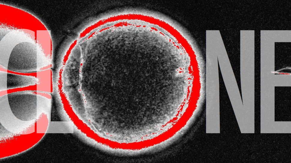 Biggest Scientific Breakthroughs of 2013