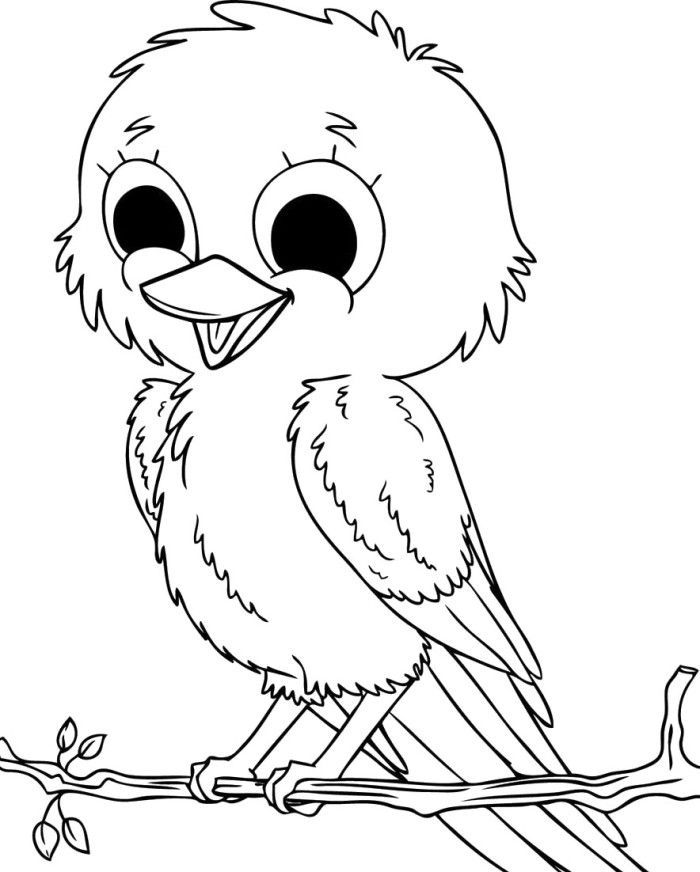 Pictures Baby Sparrow Birds Coloring Pages Bird Coloring Pages
