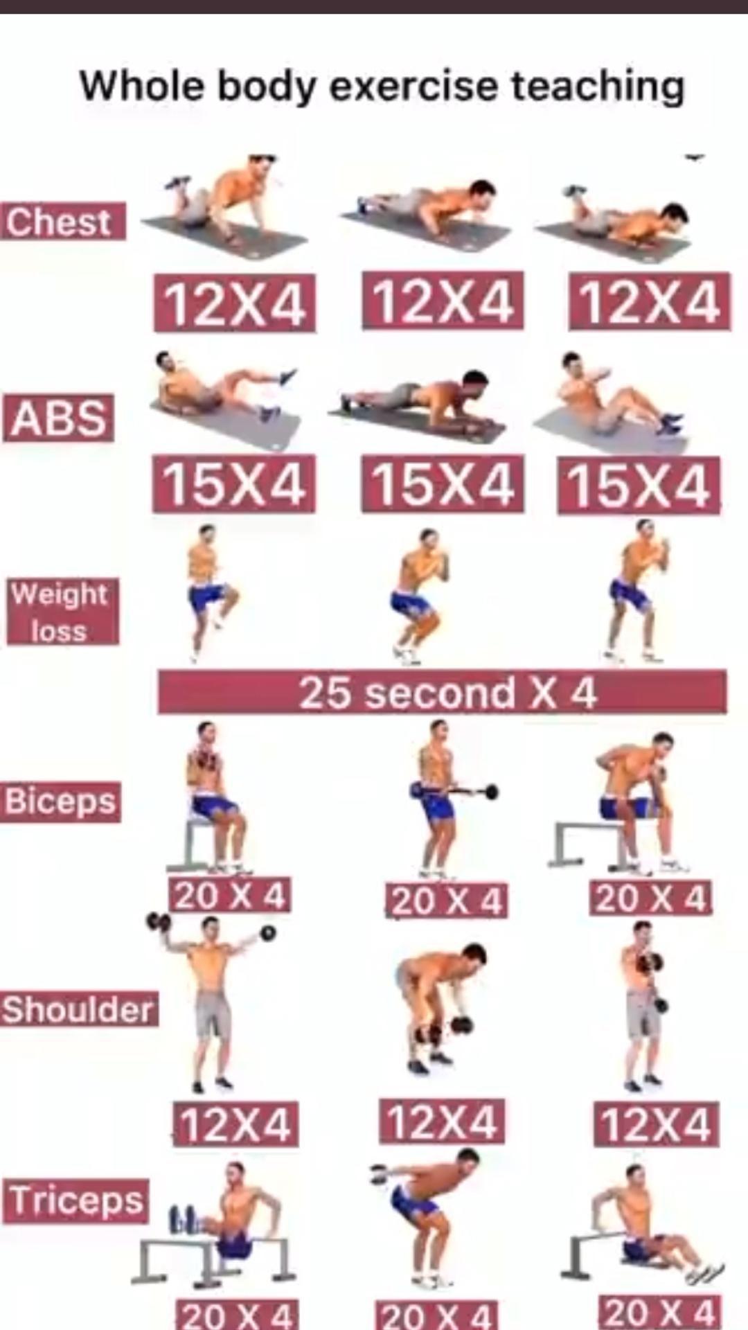 Whole Body Exercise Training