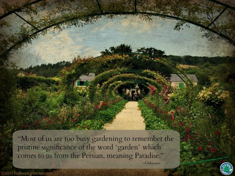 Flowering Wisdom Garden quotes, Landscape, Garden care