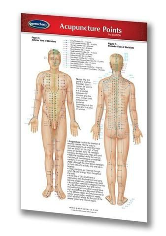 Health & Wellness - Acupuncture Points (Pocket Size) | Acupuntura ...