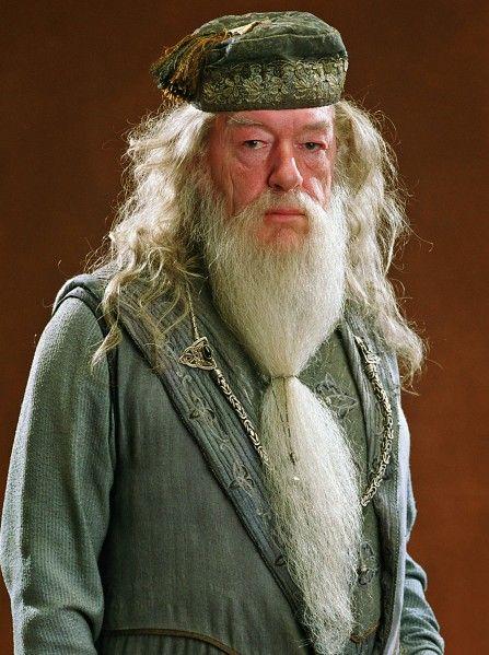 Dumbledore Albus Dumbledore Harry Potter Characters Harry Potter Aesthetic