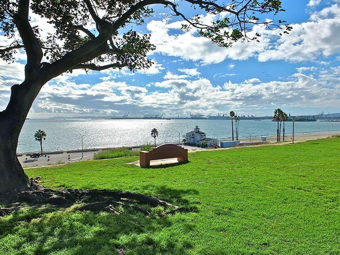 Bluff Park Long Beach Ca Long Beach California Long Beach San Luis Obispo County