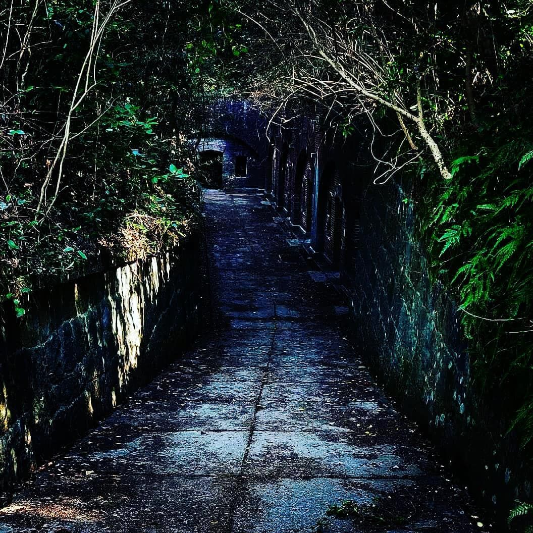 More Pictures Of Tomogashima The Abandoned Island Here You