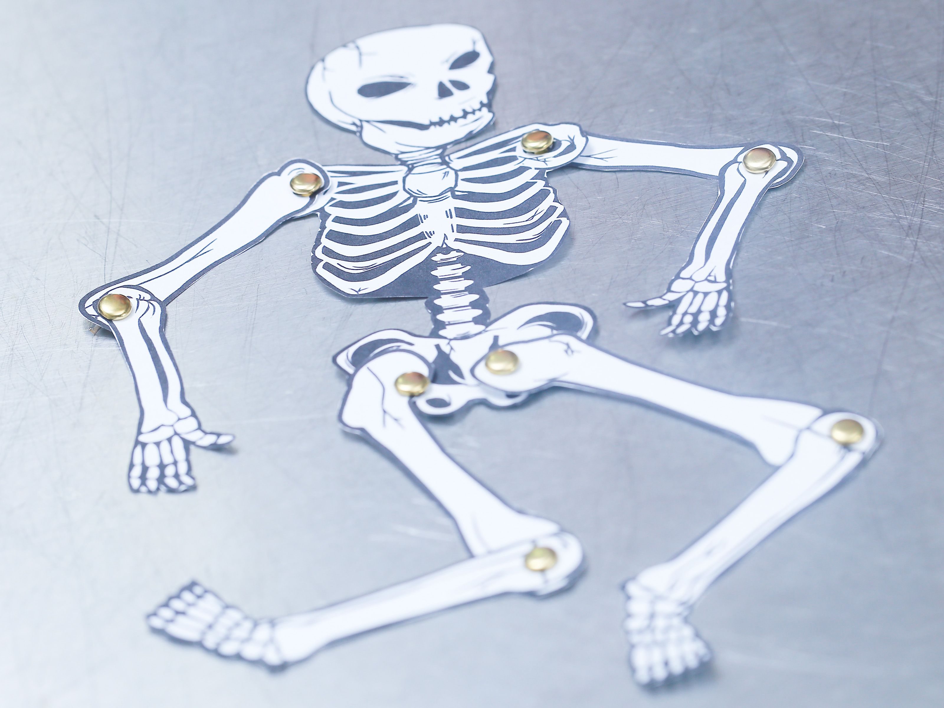 Make A Human Skeleton Out Of Paper