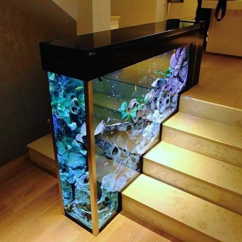 Aquarium Design, Home Remodeling