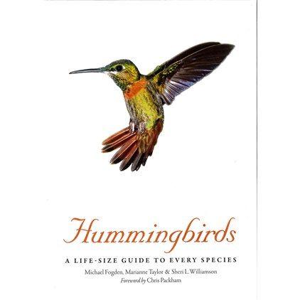 Hummingbirds (Fogden, Taylor & Williamson)