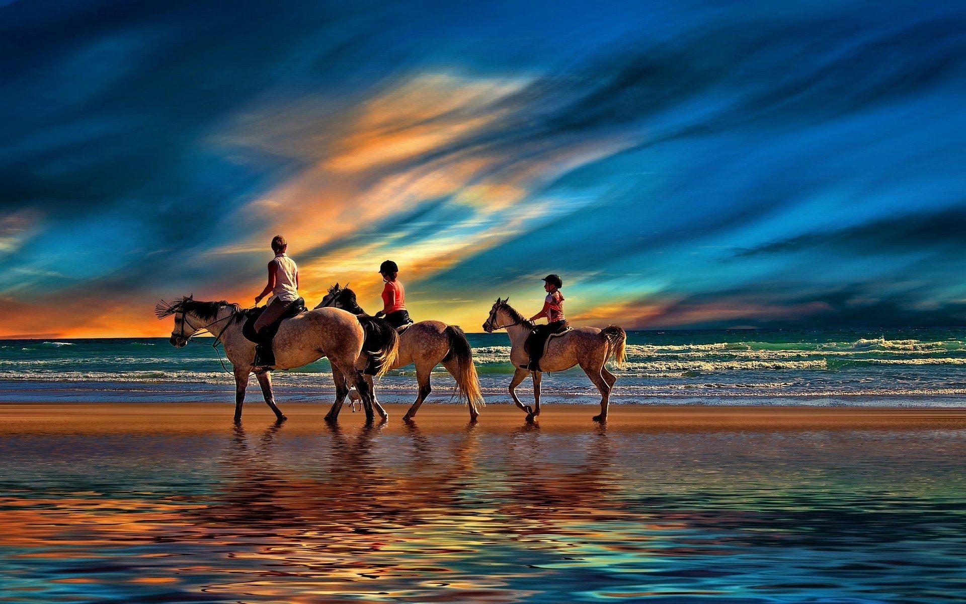 Good Wallpaper Horse Ocean - afd8eefd33cb2e0bcf5616023c7a4b4b  You Should Have_569142.jpg