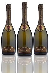Boizel, Joyeau de France, 1996. Most curious about this champagne - has anyone had a chance to try it?