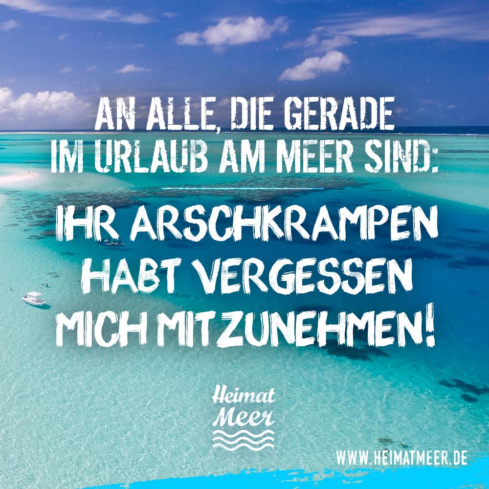Lustige Spruche Norddeutsche Weisheiten Arschkrampe Urlaub Am Meer Zitate Reisen