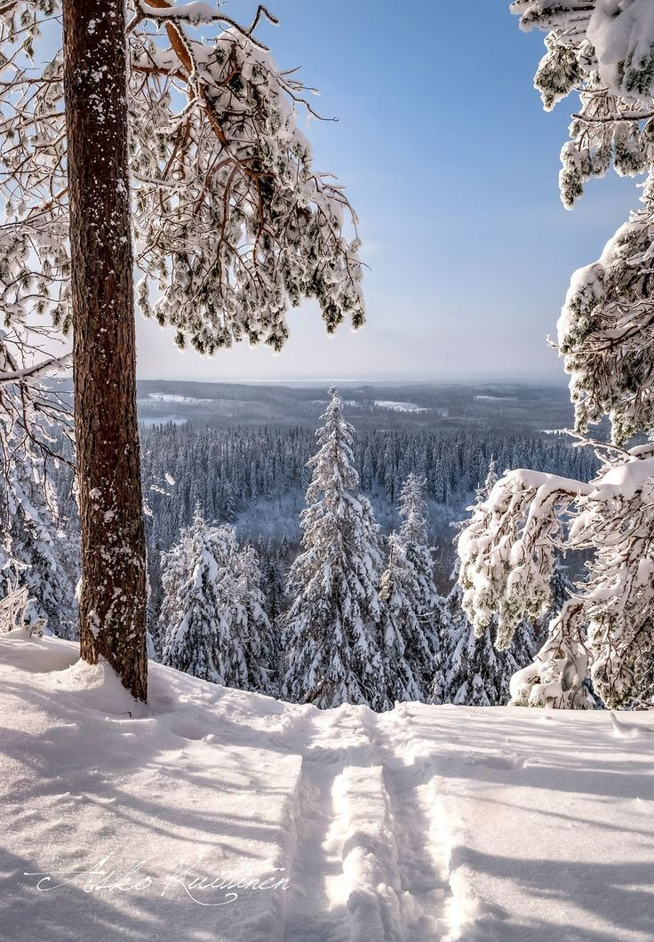 19 Reasons Colorado Is A Wintry Heaven On Earth