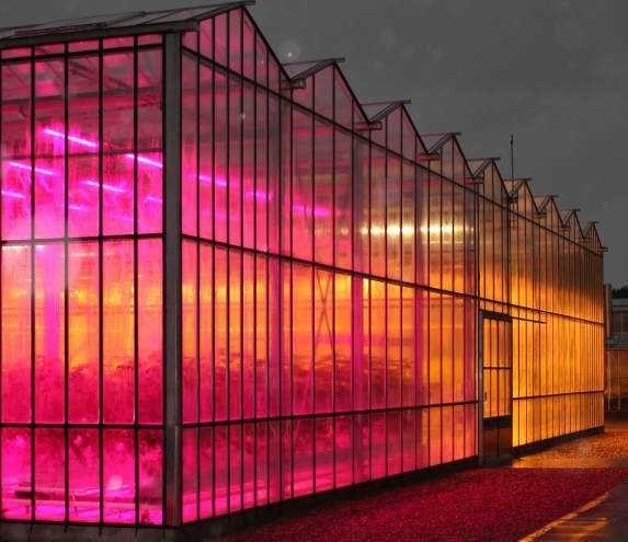 Greenhouse lights greenhouse led grow lights pinterest greenhouse lights aloadofball Images
