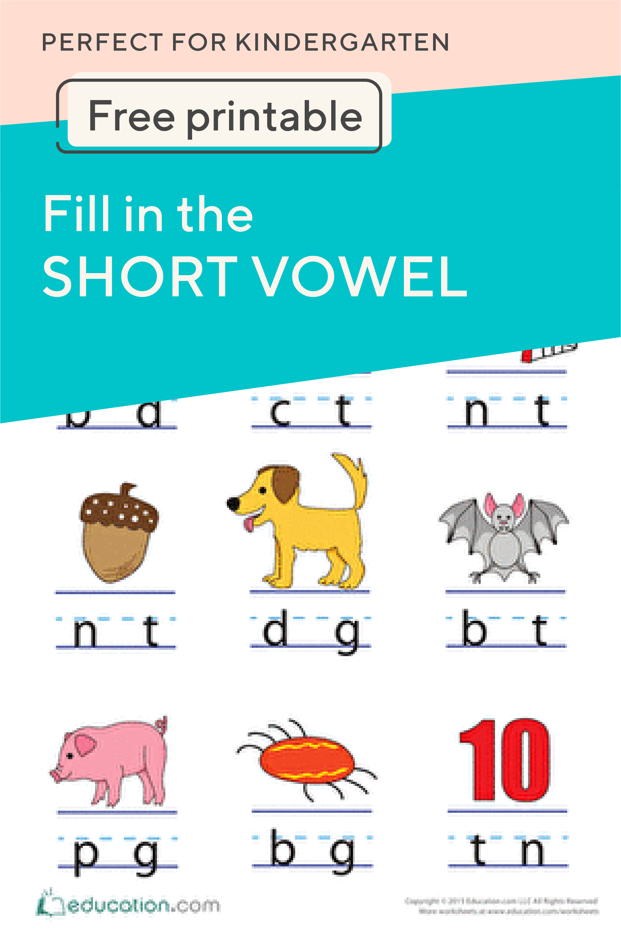 Fill In The Short Vowel