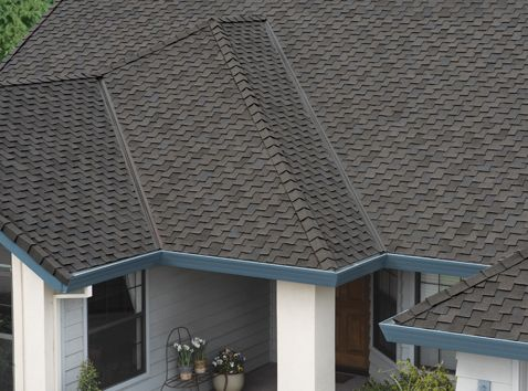 Browse Our Specialty Color Selection Shingle Family Specialty Wind Resistance 110 130 Mph Algae Resistanc Roof Shingle Colors Roof Shingles Shingling