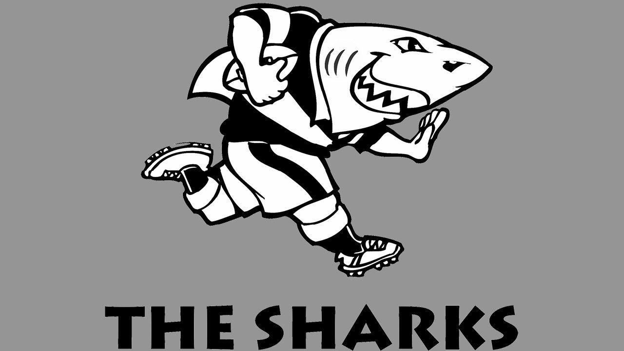 Meaning Sharks Logo And Symbol History And Evolution Shark Logo Rugby Logo Shark