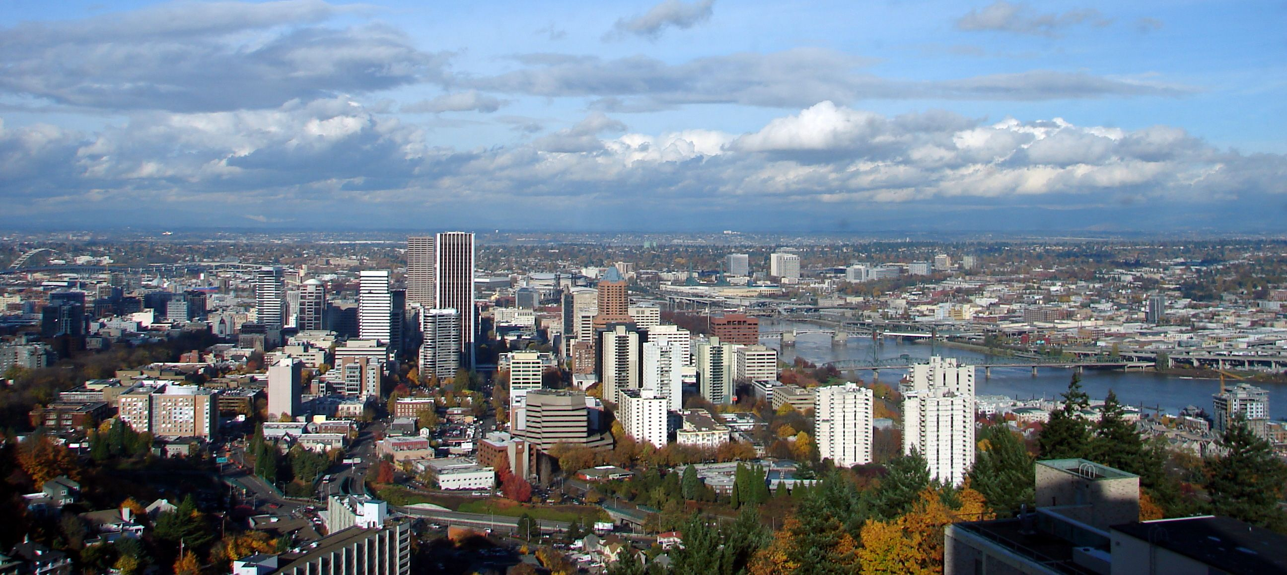 More Than One Homeless Person Dies Each Week In Portland Area Report Says Moving To Portland Oregon Downtown Portland Oregon Downtown Portland