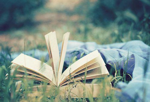 (via qomaspeakup) boek in gras
