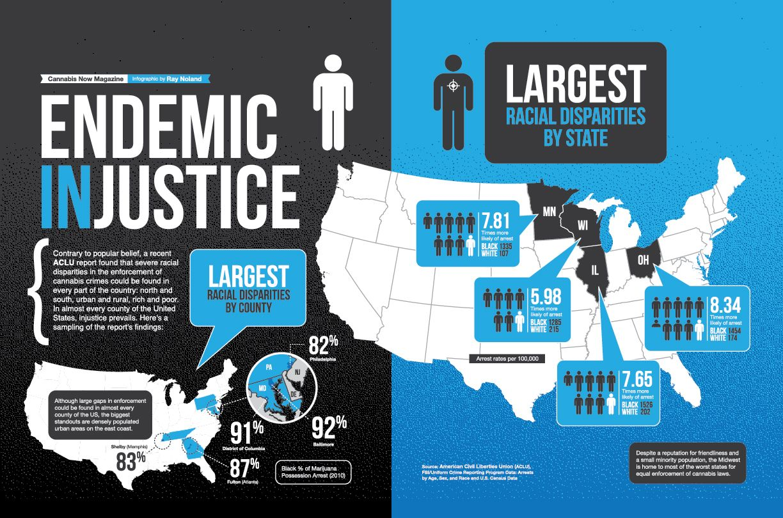 Endemic Injustice Visual Ly Teaching Us History Criminal Psychology Injustice