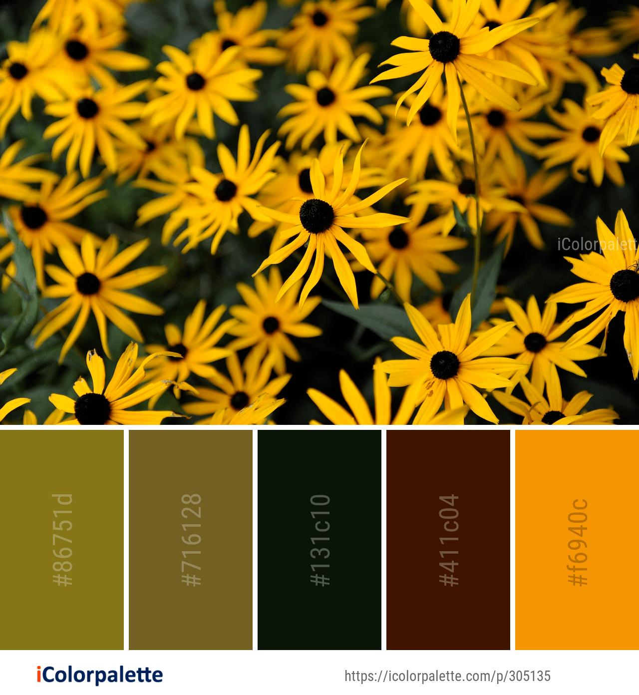 Color Palette Ideas Icolorpalette Colors Inspiration Graphics Design Inspiration Beautiful Colorpalette Palettes Color Palette Color Colorful Flowers