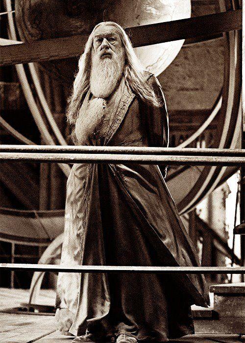 Albus Dumbledore Harry Potter Characters Harry Potter Universal Harry Potter Cast