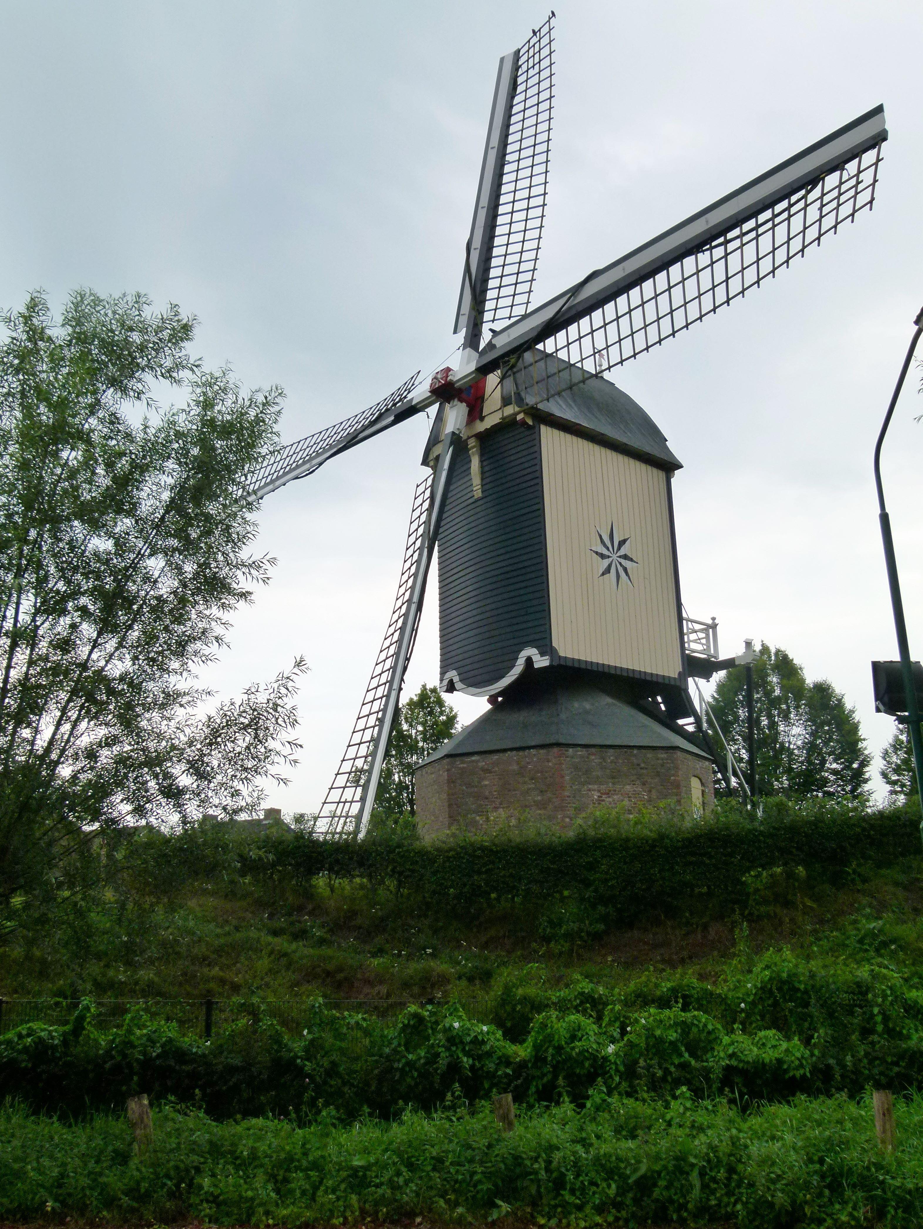 Quilt Windmill Windlust