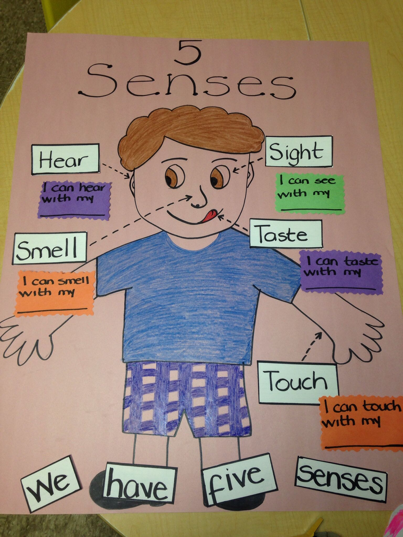 Five Senses Proyect For Preschool