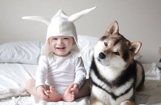 赤ちゃん、犬、命、共生、共存、種、可能性、つなぐ