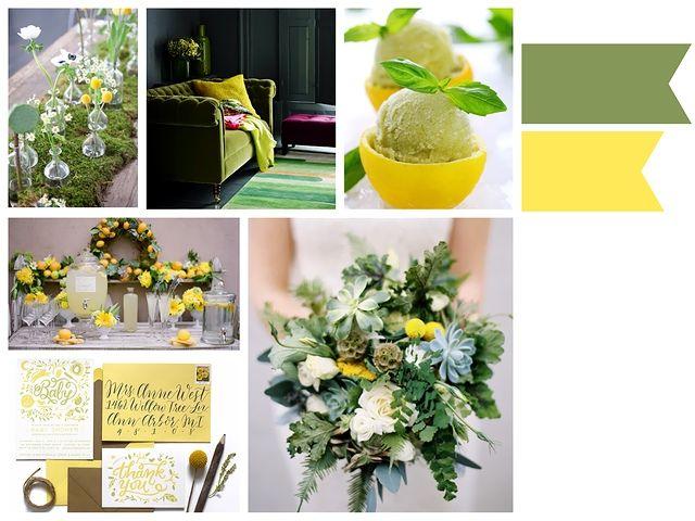 Moss Green x Yellow – ベンジャミンズパーティー