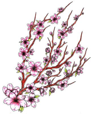Japanese Flowers Meanings Blossom Japanese Cherry Tattoo