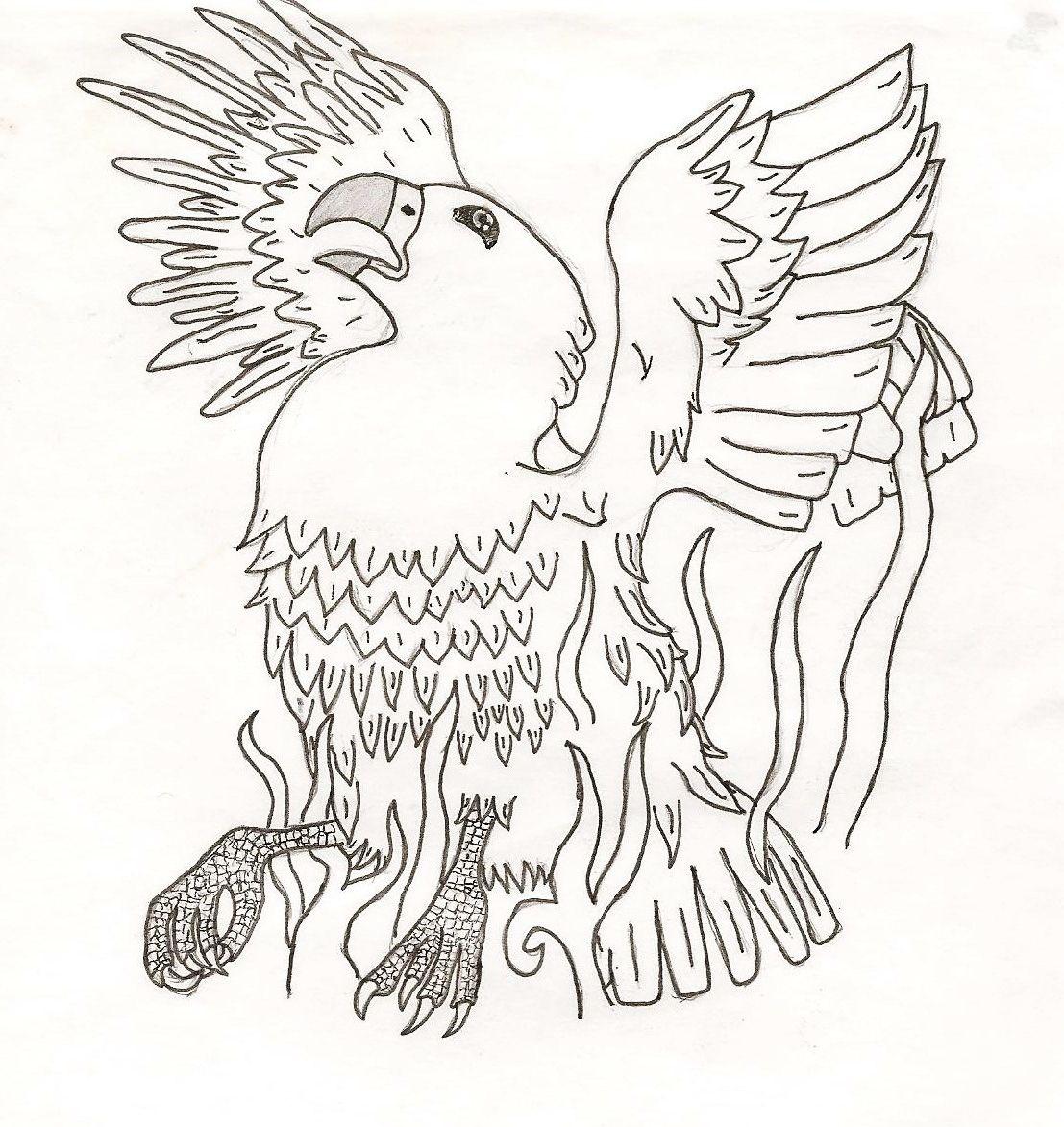 Phoenix By Helen Shellard Easy Art Drawing Sketch Colouring Page Nature Mythology Bird Animal Art Drawings Sketches Coloring Pages Nature Art Design