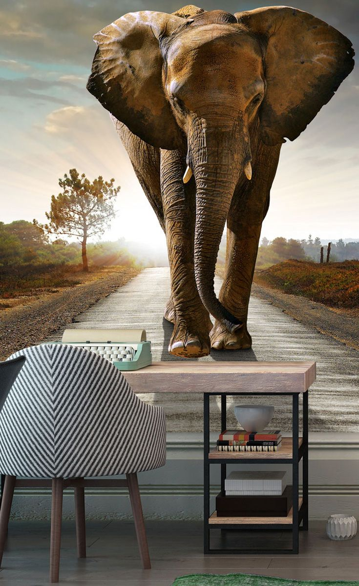 Walking Elephant фотообои Wall Murals Wallpaper и Creative Home