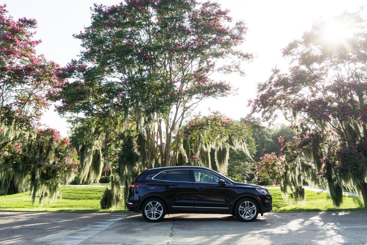 Looks Good Against Any Background The Lincolnmkc Posing In Baton