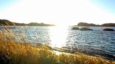 naturensdronning: Dagens utvalgte - 5. des 2015