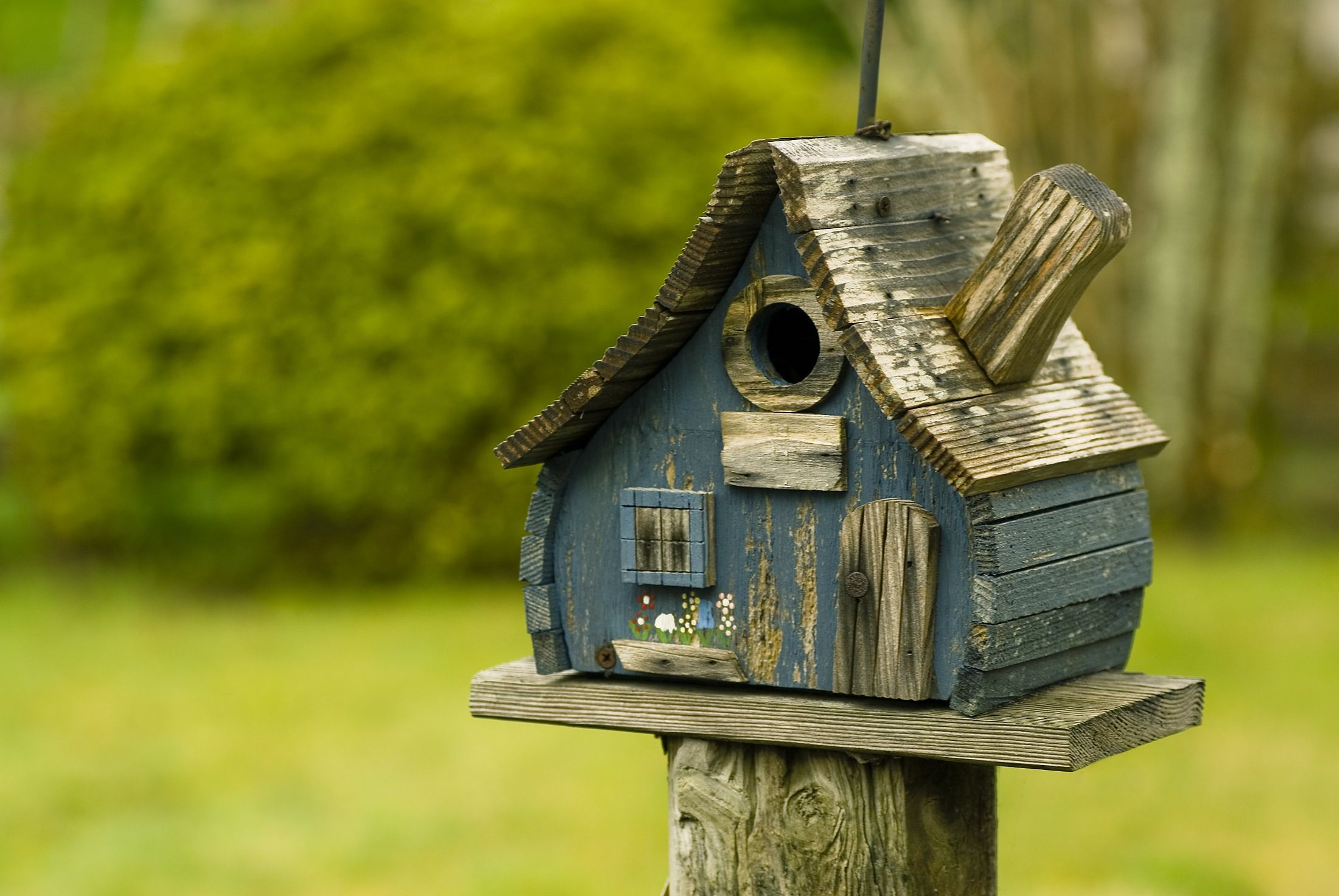 Pin By Paul Ledrew On Birdhouses Bird Houses House