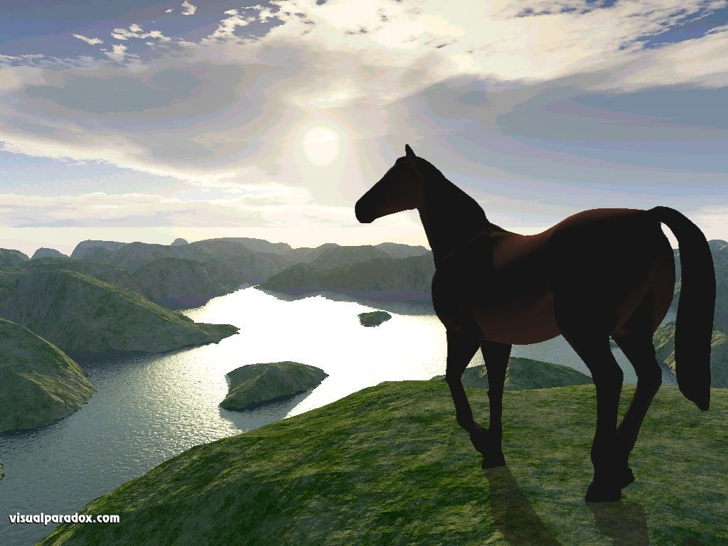 Must see Wallpaper Horse Landscape - afe2e018bdbe898a9902053a72b97b54  You Should Have_366320.jpg
