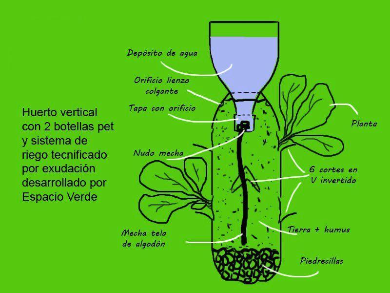 Hortaliza vertical pdf to jpg