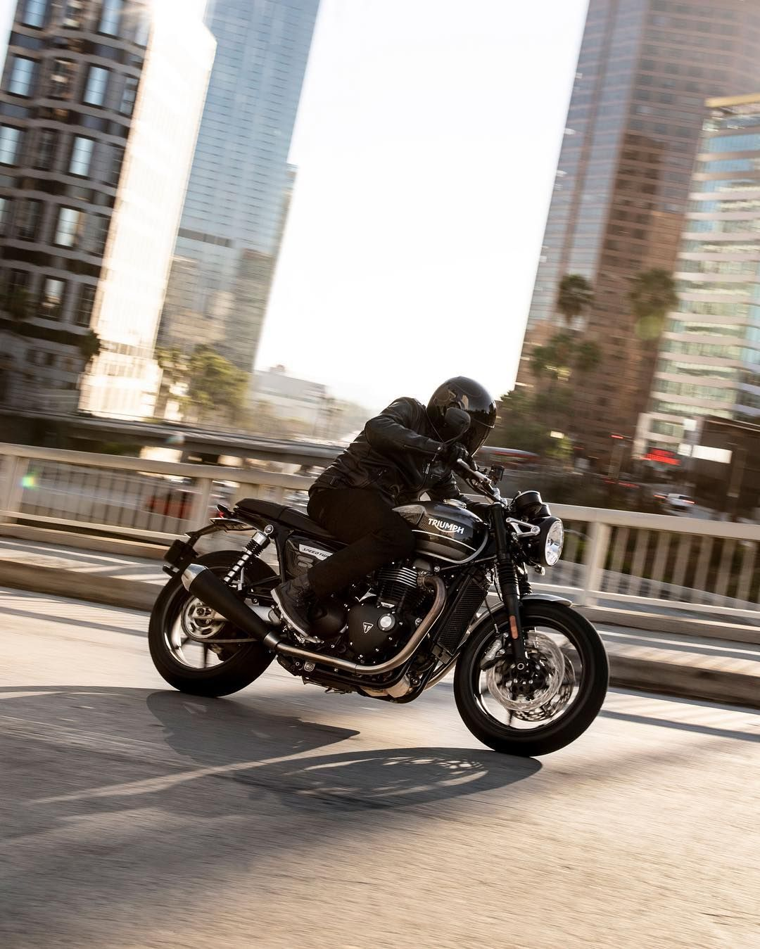 The 1200cc Speed Twin Combining Triumphs Street Twin Modern Custom