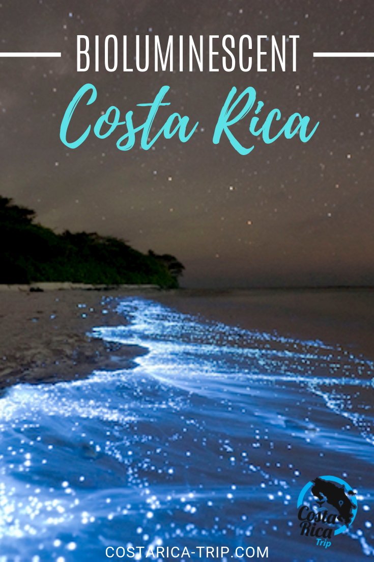 One Of The Most Spectacular Night Tours You Can Experience While In Costa Rica Is The Bioluminescent Kayak Tou Costa Rica Travel Costa Rica Vacation Costa Rica